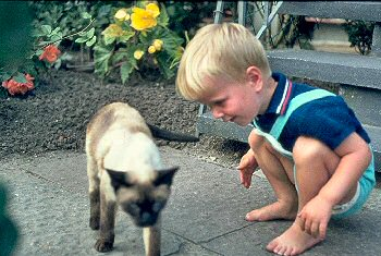 Picture of Armin with a cat