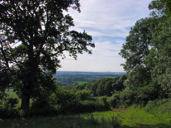 Picture of a view from Bowden Park