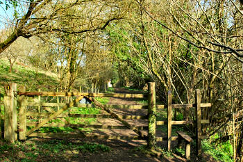 Picture of a footpath with a gate and stile